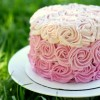 All Natural Ombre Cake