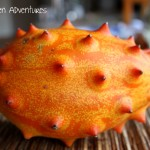 Kiwano: A Failed Kitchen Adventure