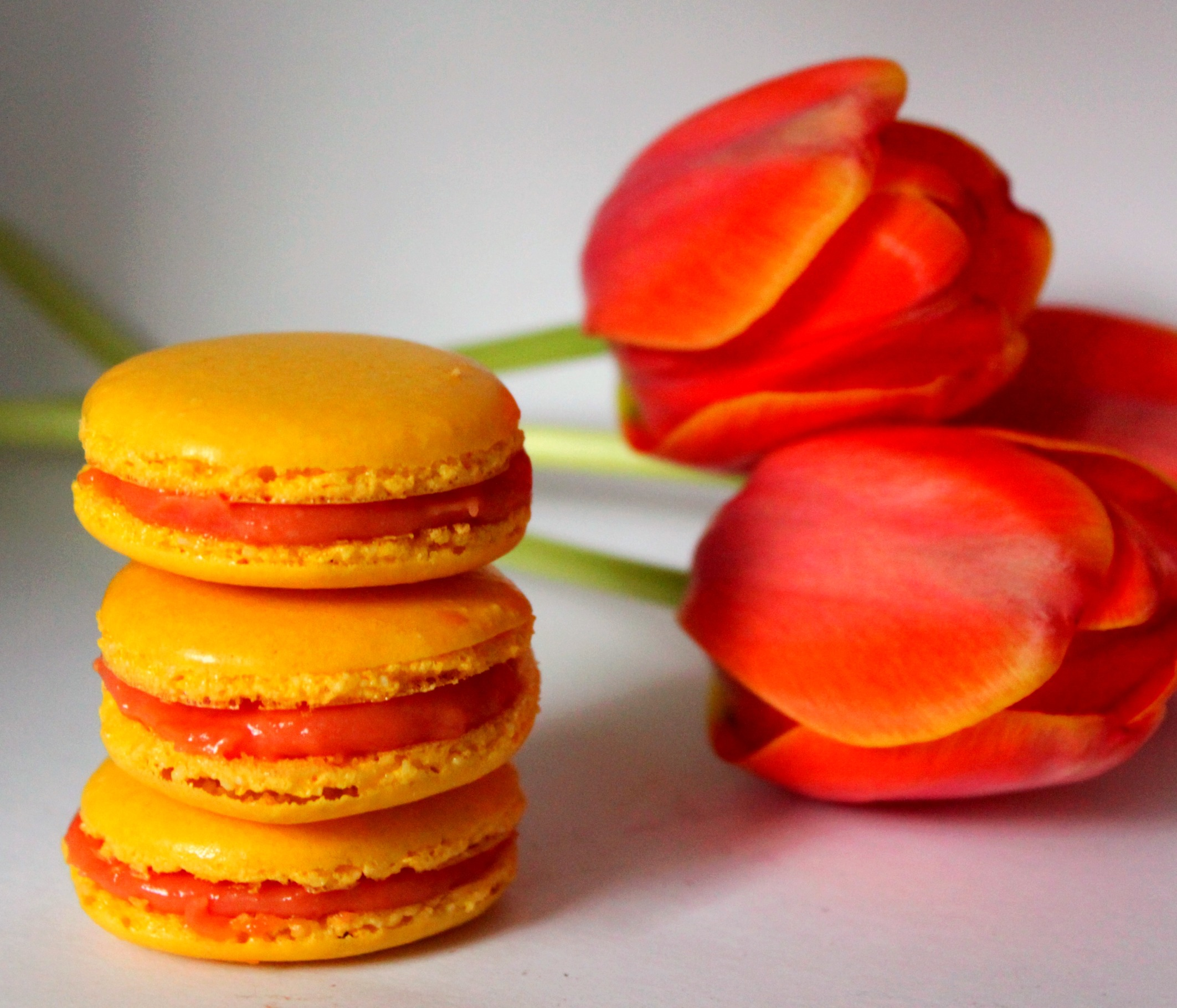 Prickly pear Macarons
