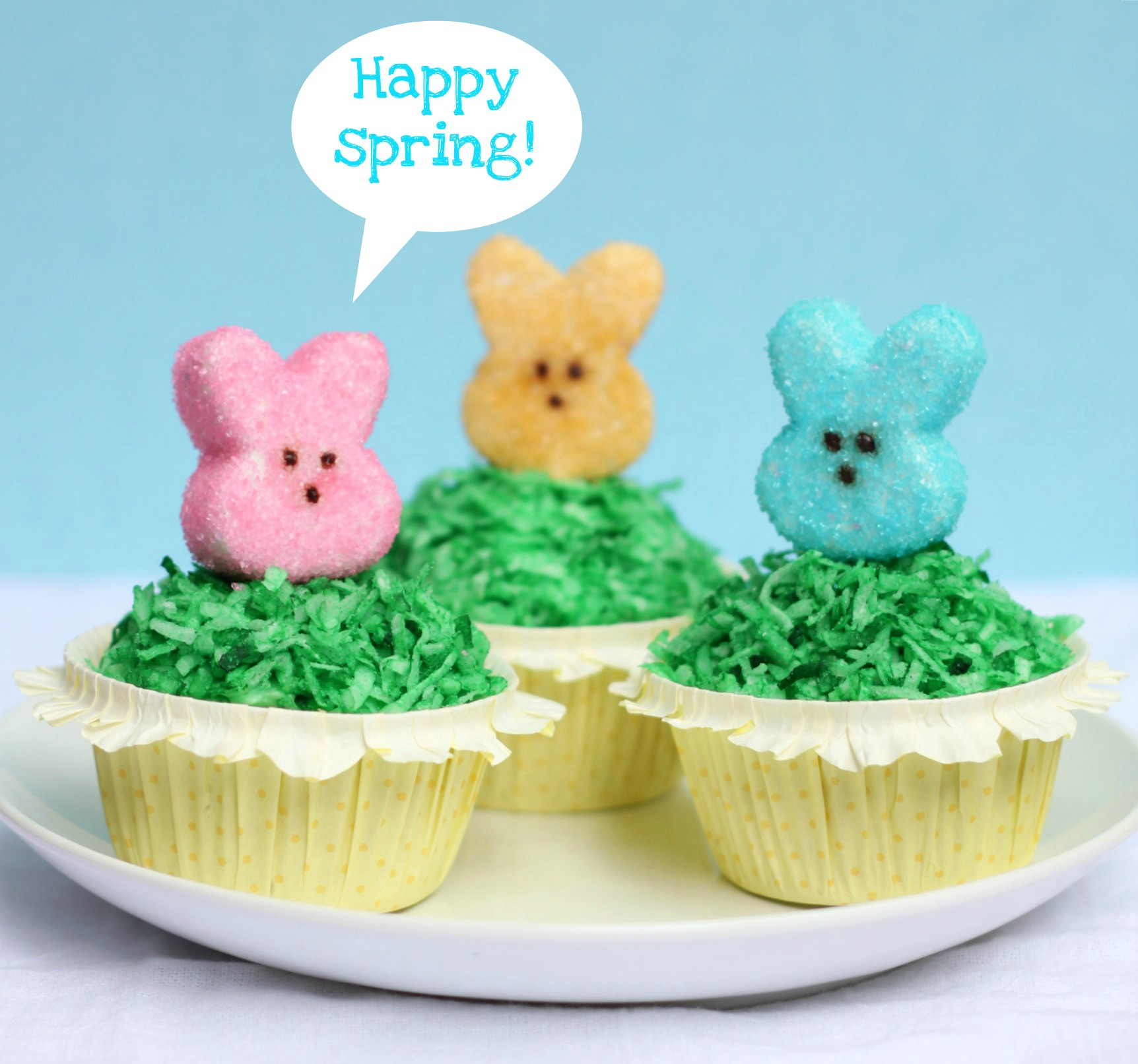 3 Cupcakes with Homemade Marshmallow Peeps on top