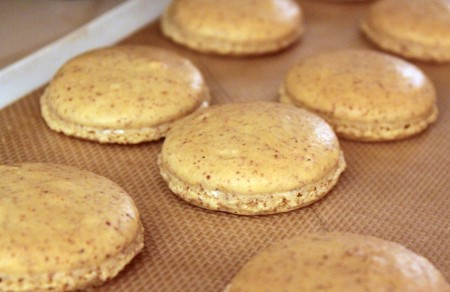 check to see if macarons are done by grabbing the top of one macaron ...