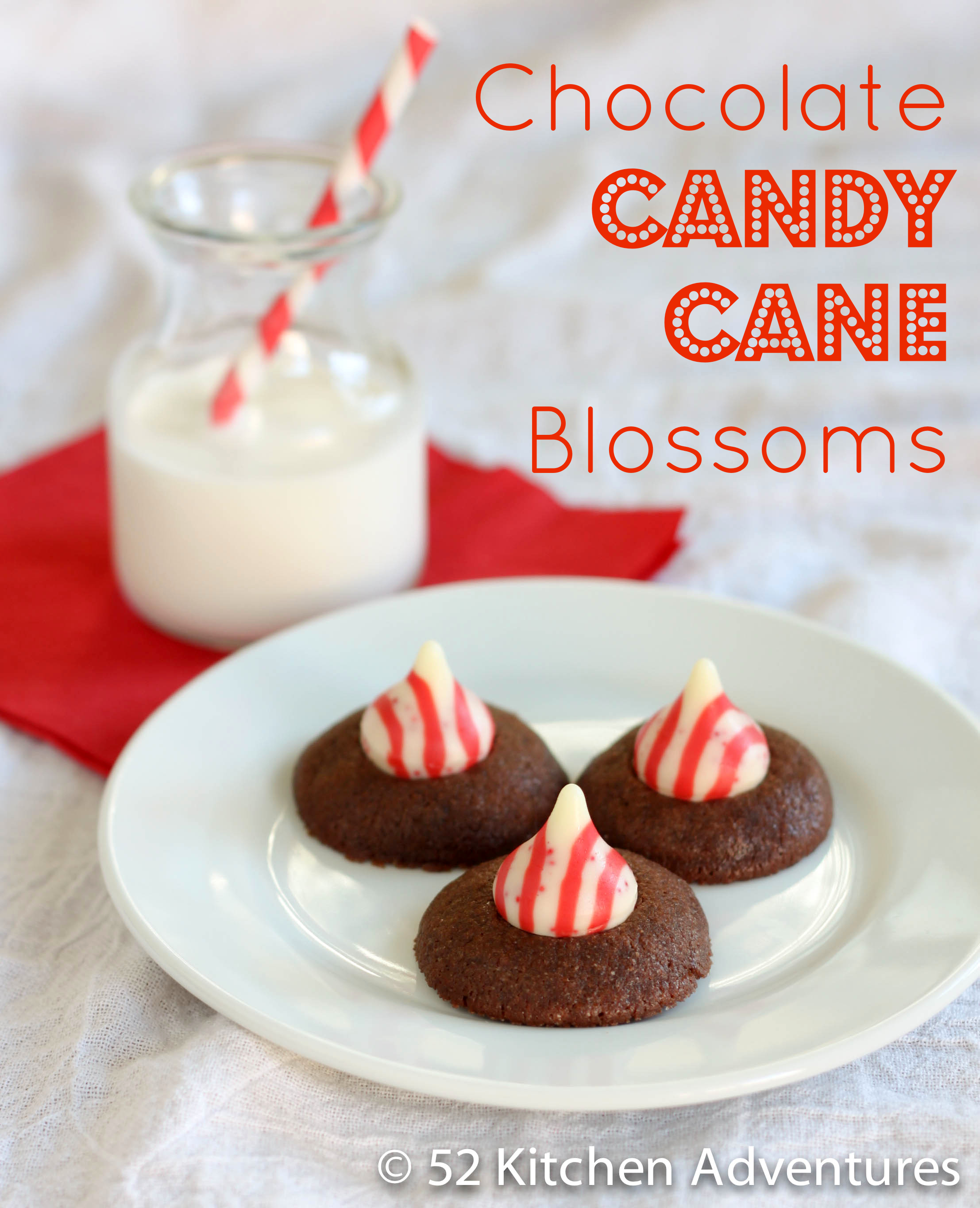 Chocolate Candy Cane Blossoms
