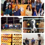 My Visit to Tillamook Cheese Factory
