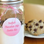 DIY Perfect Chocolate Chip Cookie Mix in a Jar