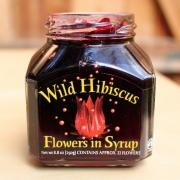 Week 52: Hibiscus Flowers