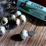 Week 12: Tiny Poached Quail Eggs