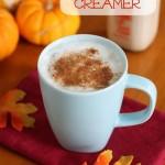 Homemade Pumpkin Pie Creamer