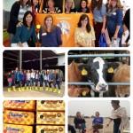My Visit to Tillamook Cheese Factory